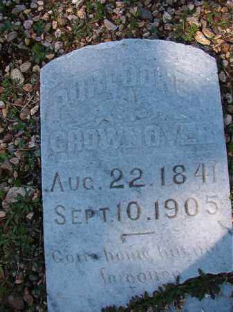 CROWNOVER, PURLOONEY - Dallas County, Arkansas | PURLOONEY CROWNOVER - Arkansas Gravestone Photos