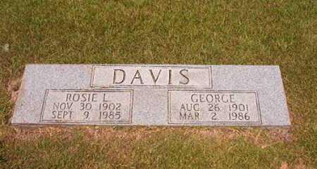 DAVIS, GEORGE - Dallas County, Arkansas | GEORGE DAVIS - Arkansas Gravestone Photos