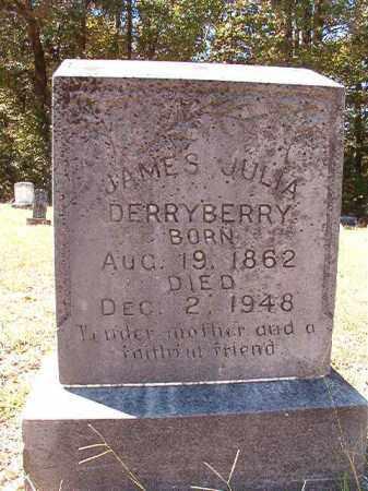 DERRYBERRY, JAMES JULIA - Dallas County, Arkansas | JAMES JULIA DERRYBERRY - Arkansas Gravestone Photos