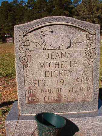 DICKEY, JEANA MICHELLE - Dallas County, Arkansas | JEANA MICHELLE DICKEY - Arkansas Gravestone Photos