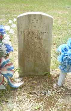 DOWD  (VETERAN WWII), TECUMSEH V - Dallas County, Arkansas | TECUMSEH V DOWD  (VETERAN WWII) - Arkansas Gravestone Photos