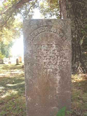 DRAKE, ALFRED R - Dallas County, Arkansas | ALFRED R DRAKE - Arkansas Gravestone Photos