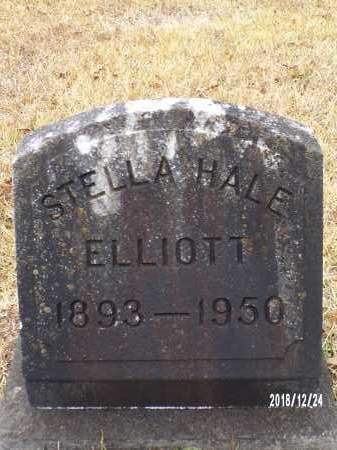 ELLIOTT, STELLA - Dallas County, Arkansas | STELLA ELLIOTT - Arkansas Gravestone Photos