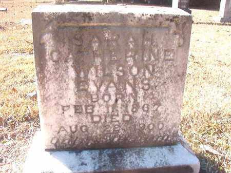 WILSON EVANS, SARAH CATHERINE - Dallas County, Arkansas   SARAH CATHERINE WILSON EVANS - Arkansas Gravestone Photos