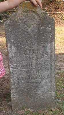 FIELDS, EASTER - Dallas County, Arkansas   EASTER FIELDS - Arkansas Gravestone Photos