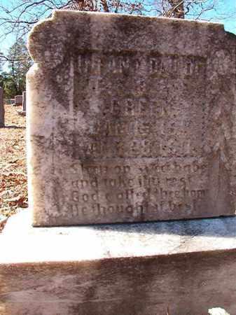 GREEN, INFANT DAUGHTER - Dallas County, Arkansas | INFANT DAUGHTER GREEN - Arkansas Gravestone Photos