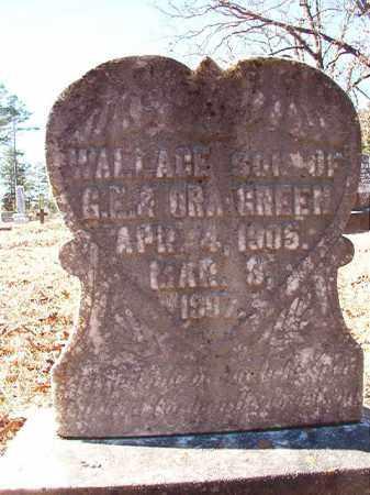 GREEN, WALLACE - Dallas County, Arkansas | WALLACE GREEN - Arkansas Gravestone Photos