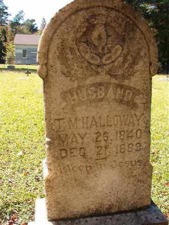 HALLOWAY, T M - Dallas County, Arkansas   T M HALLOWAY - Arkansas Gravestone Photos