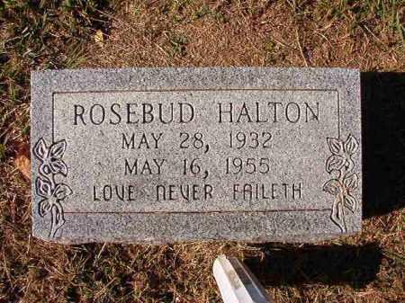 HALTON, ROSEBUD - Dallas County, Arkansas | ROSEBUD HALTON - Arkansas Gravestone Photos