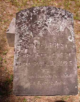 HARRISON, ELLEN - Dallas County, Arkansas | ELLEN HARRISON - Arkansas Gravestone Photos