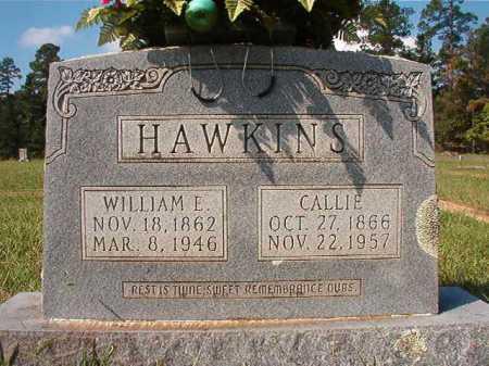HAWKINS, WILLIAM E - Dallas County, Arkansas | WILLIAM E HAWKINS - Arkansas Gravestone Photos