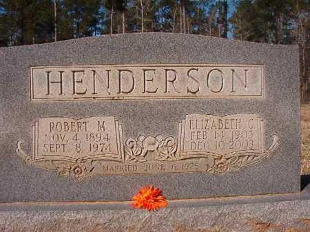 HENDERSON, ELIZABETH C - Dallas County, Arkansas | ELIZABETH C HENDERSON - Arkansas Gravestone Photos