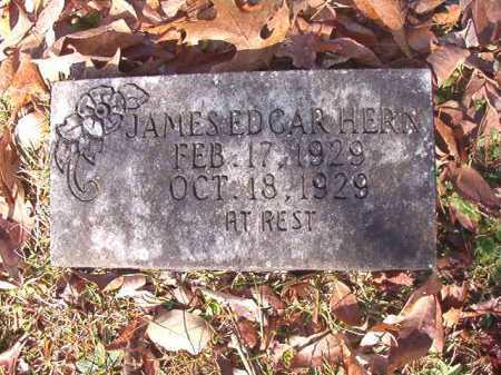 HERN, JAMES EDGAR - Dallas County, Arkansas | JAMES EDGAR HERN - Arkansas Gravestone Photos