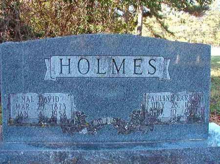 HOLMES, NAL DAVID - Dallas County, Arkansas   NAL DAVID HOLMES - Arkansas Gravestone Photos