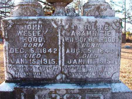 HOOD, CAROLINE ARAMINTIE - Dallas County, Arkansas | CAROLINE ARAMINTIE HOOD - Arkansas Gravestone Photos