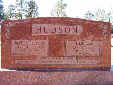 HUDSON, LILLIE MAE - Dallas County, Arkansas | LILLIE MAE HUDSON - Arkansas Gravestone Photos