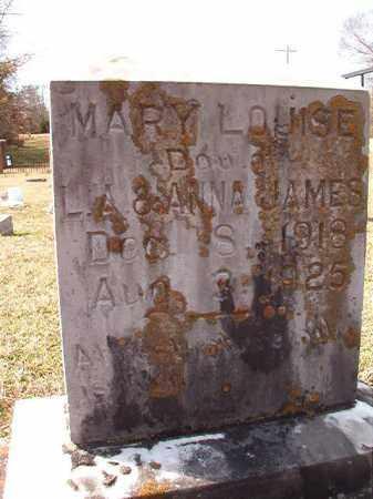 JAMES, MARY LOUISE - Dallas County, Arkansas   MARY LOUISE JAMES - Arkansas Gravestone Photos