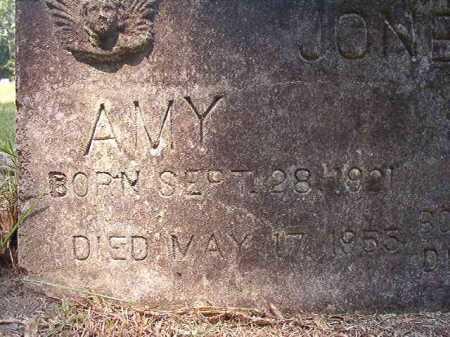 JONES, AMY - Dallas County, Arkansas | AMY JONES - Arkansas Gravestone Photos