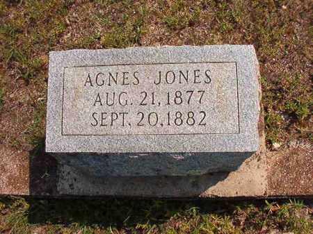 JONES, AGNES - Dallas County, Arkansas | AGNES JONES - Arkansas Gravestone Photos