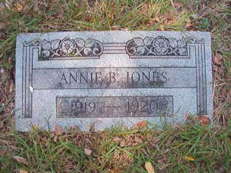 JONES, ANNIE B - Dallas County, Arkansas | ANNIE B JONES - Arkansas Gravestone Photos