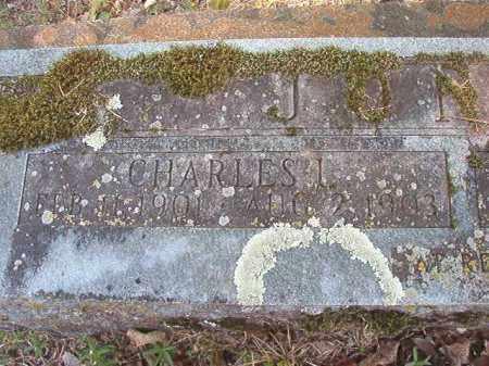 JONES, CHARLES L - Dallas County, Arkansas | CHARLES L JONES - Arkansas Gravestone Photos