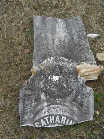 JONES, CATHERINE - Dallas County, Arkansas | CATHERINE JONES - Arkansas Gravestone Photos