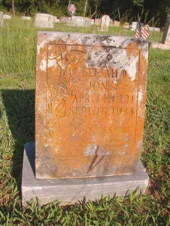 JONES, ELIJAH B - Dallas County, Arkansas | ELIJAH B JONES - Arkansas Gravestone Photos