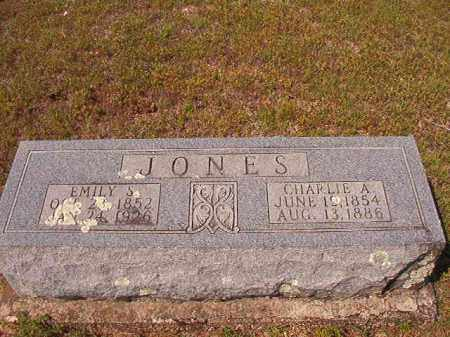 JONES, CHARLIE A - Dallas County, Arkansas | CHARLIE A JONES - Arkansas Gravestone Photos