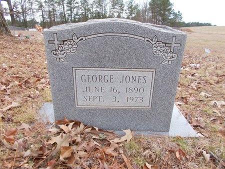 JONES, GEORGE - Dallas County, Arkansas | GEORGE JONES - Arkansas Gravestone Photos