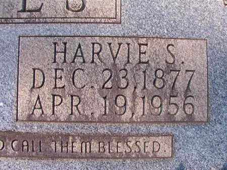 JONES, HARVIE S - Dallas County, Arkansas   HARVIE S JONES - Arkansas Gravestone Photos