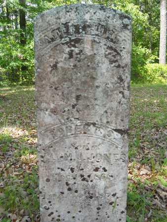 JONES, ROBERT S - Dallas County, Arkansas | ROBERT S JONES - Arkansas Gravestone Photos