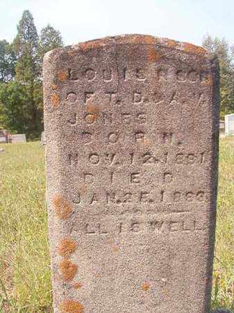 JONES, LOUIS R - Dallas County, Arkansas | LOUIS R JONES - Arkansas Gravestone Photos