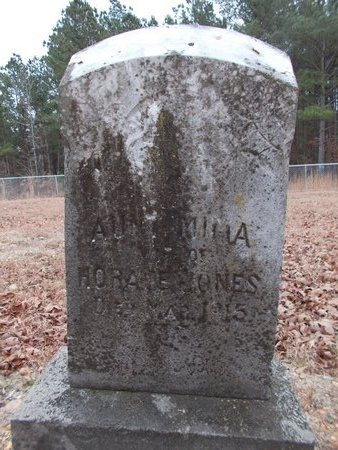 JONES, MIMA - Dallas County, Arkansas | MIMA JONES - Arkansas Gravestone Photos