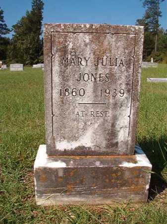 JONES, MARY JULIA - Dallas County, Arkansas | MARY JULIA JONES - Arkansas Gravestone Photos
