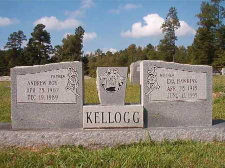 HAWKINS KELLOGG, EVA - Dallas County, Arkansas | EVA HAWKINS KELLOGG - Arkansas Gravestone Photos