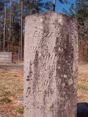 LAUNIUS, ELIZA C - Dallas County, Arkansas   ELIZA C LAUNIUS - Arkansas Gravestone Photos