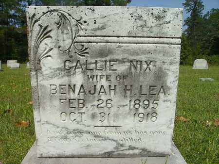 LEA, CALLIE - Dallas County, Arkansas | CALLIE LEA - Arkansas Gravestone Photos