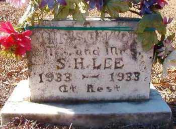 LEE, INFANT SON - Dallas County, Arkansas | INFANT SON LEE - Arkansas Gravestone Photos