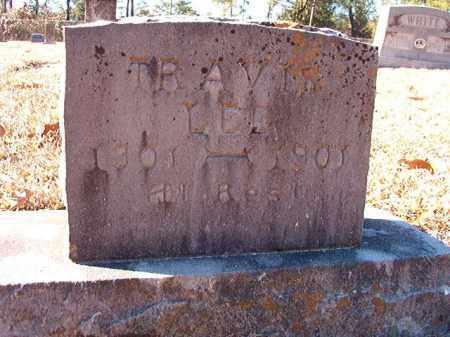 LEE, TRAVIS - Dallas County, Arkansas | TRAVIS LEE - Arkansas Gravestone Photos