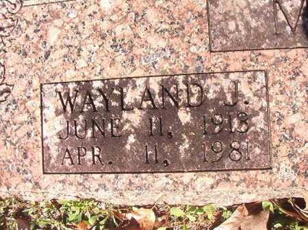 MAHAN, WAYLAND JAMES - Dallas County, Arkansas | WAYLAND JAMES MAHAN - Arkansas Gravestone Photos
