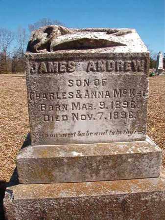 MCKEE, JAMES ANDREW - Dallas County, Arkansas | JAMES ANDREW MCKEE - Arkansas Gravestone Photos