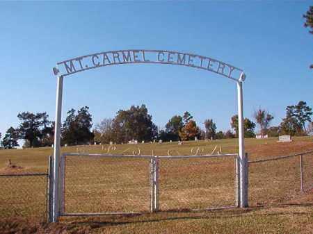*MOUNT CARMEL CEMETERY,  - Dallas County, Arkansas    *MOUNT CARMEL CEMETERY - Arkansas Gravestone Photos