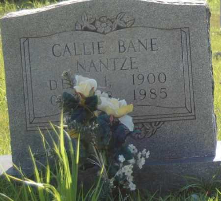 NANTZE, CALLIE - Dallas County, Arkansas | CALLIE NANTZE - Arkansas Gravestone Photos