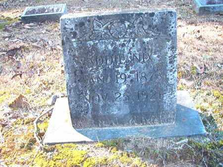 NIX, ADDIE - Dallas County, Arkansas | ADDIE NIX - Arkansas Gravestone Photos