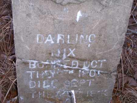 NIX, DARLING - Dallas County, Arkansas | DARLING NIX - Arkansas Gravestone Photos
