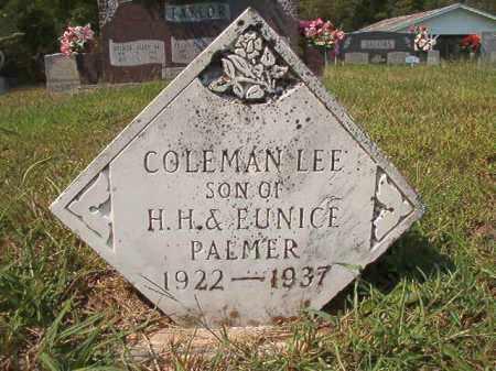 PALMER, COLEMAN LEE - Dallas County, Arkansas | COLEMAN LEE PALMER - Arkansas Gravestone Photos