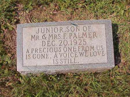 PALMER, JUNIOR - Dallas County, Arkansas | JUNIOR PALMER - Arkansas Gravestone Photos