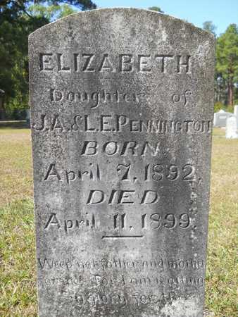 PENNINGTON, ELIZABETH - Dallas County, Arkansas | ELIZABETH PENNINGTON - Arkansas Gravestone Photos