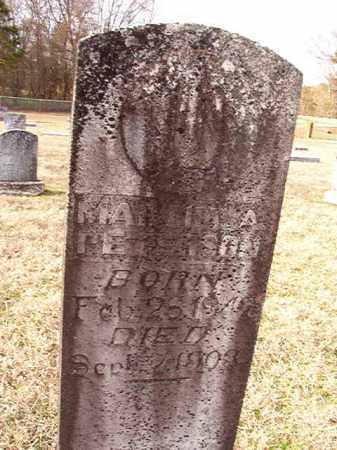 PETERSON, MARTHA A - Dallas County, Arkansas | MARTHA A PETERSON - Arkansas Gravestone Photos