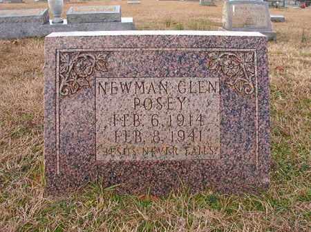 POSEY, NEWMAN GLEN - Dallas County, Arkansas | NEWMAN GLEN POSEY - Arkansas Gravestone Photos